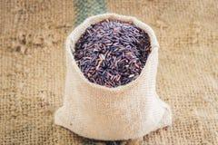 Καφετί ρύζι Στοκ Εικόνες