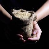 Καφετί ρύζι ramie στο σάκο Στοκ φωτογραφίες με δικαίωμα ελεύθερης χρήσης