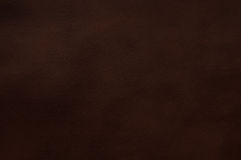 καφετί σκοτεινό δέρμα Στοκ φωτογραφία με δικαίωμα ελεύθερης χρήσης