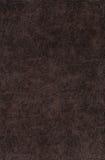 καφετί σκοτεινό δέρμα Στοκ φωτογραφίες με δικαίωμα ελεύθερης χρήσης