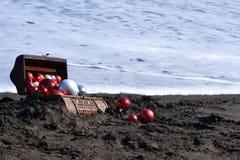 Καφετί στήθος στην άμμο Στοκ εικόνες με δικαίωμα ελεύθερης χρήσης