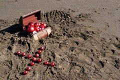 Καφετί στήθος στην άμμο Στοκ φωτογραφίες με δικαίωμα ελεύθερης χρήσης