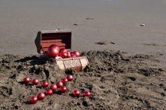 Καφετί στήθος στην άμμο Στοκ φωτογραφία με δικαίωμα ελεύθερης χρήσης