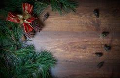 Καφετί υπόβαθρο διακοπών Χριστουγέννων με τους κλάδους και τους κώνους έλατου αφθονία του διαστήματος αντιγράφων Στοκ Εικόνες