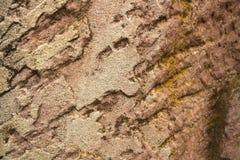 Καφετί υπόβαθρο σύστασης πετρών Στοκ Εικόνες