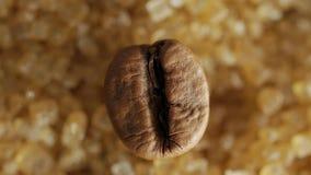 Καφετί φασόλι καφέ στα γλυκά καφετιά κρύσταλλα ζάχαρης, μακρο πυροβολισμός απόθεμα βίντεο