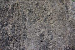 καφετί χώμα Στοκ φωτογραφίες με δικαίωμα ελεύθερης χρήσης