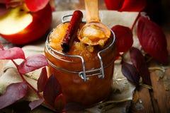 Καφετί applesauce ζάχαρης και κανέλας Στοκ φωτογραφία με δικαίωμα ελεύθερης χρήσης