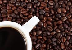 Καφετί arabica φασόλι καφέ που απομονώνεται Στοκ εικόνες με δικαίωμα ελεύθερης χρήσης