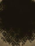 Καφετί Damask της Tan κρέμας μαύρο εκλεκτής ποιότητας υπόβαθρο Στοκ Εικόνες
