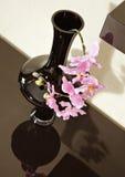 καφετί orchid λουλουδιών vase ρα Στοκ Φωτογραφία