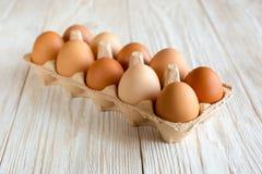 καφετιά αυγά δέκα Στοκ Φωτογραφίες