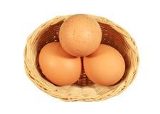 καφετιά αυγά καλαθιών Στοκ φωτογραφία με δικαίωμα ελεύθερης χρήσης