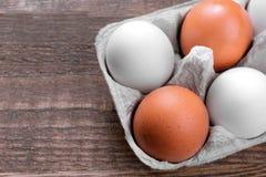 Καφετιά αυγά κοτόπουλου σε έναν δίσκο για τα αυγά σε ένα καφετί υπόβαθρο Στοκ Φωτογραφίες