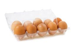 Καφετιά αυγά στο πλαστικό κιβώτιο πέρα από το λευκό Στοκ εικόνες με δικαίωμα ελεύθερης χρήσης