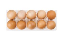 Καφετιά αυγά στο πλαστικό κιβώτιο πέρα από το λευκό Στοκ εικόνα με δικαίωμα ελεύθερης χρήσης