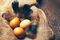 καφετιά αυγά τρία Στοκ εικόνες με δικαίωμα ελεύθερης χρήσης