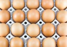 καφετιά αυγά χρώματος κο&ta Στοκ φωτογραφία με δικαίωμα ελεύθερης χρήσης