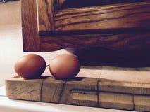 καφετιά αυγά δύο Στοκ εικόνα με δικαίωμα ελεύθερης χρήσης