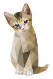 Καφετιά γάτα που κάθεται το χαμηλό πολύγωνο Στοκ φωτογραφία με δικαίωμα ελεύθερης χρήσης