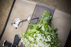 Καφετιά γυαλιά τσαντών και κύκλων Στοκ εικόνα με δικαίωμα ελεύθερης χρήσης