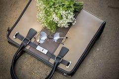 Καφετιά γυαλιά τσαντών και κύκλων Στοκ Εικόνες