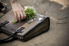 Καφετιά γυαλιά τσαντών και κύκλων Στοκ Εικόνα