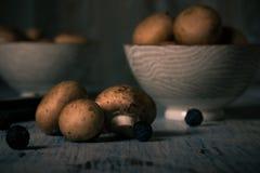 Καφετιά εδώδιμα μανιτάρια που ανατρέπονται στον εκλεκτής ποιότητας ξύλινο πίνακα Στοκ φωτογραφίες με δικαίωμα ελεύθερης χρήσης