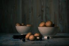 Καφετιά εδώδιμα μανιτάρια που ανατρέπονται στον μπλε εκλεκτής ποιότητας ξύλινο πίνακα Στοκ Εικόνες