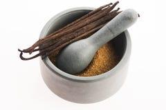 Καφετιά ζάχαρη βανίλιας και φασόλια βανίλιας στο κονίαμα Στοκ Φωτογραφία