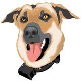 Καφετιά ζώα κατοικίδιων ζώων σκυλιών απεικόνιση αποθεμάτων