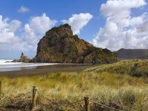 Καφετιά ηλιόλουστη παραλία άμμου Πράσινο Mountainside που λούζεται στον ήλιο στοκ φωτογραφίες με δικαίωμα ελεύθερης χρήσης