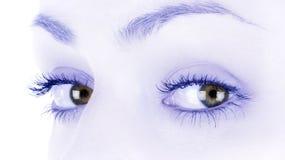 Καφετιά θηλυκά μάτια στοκ εικόνα με δικαίωμα ελεύθερης χρήσης