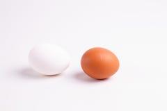 Καφετιά και άσπρα αυγά κοτόπουλου Στοκ Εικόνες