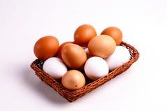 Καφετιά και άσπρα αυγά κοτόπουλου Στοκ φωτογραφία με δικαίωμα ελεύθερης χρήσης