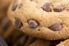 Καφετιά μπισκότα μπισκότων με τα μέρη σοκολάτας Στοκ Φωτογραφίες
