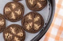 Καφετιά μπισκότα τσιπ σοκολάτας Στοκ εικόνα με δικαίωμα ελεύθερης χρήσης