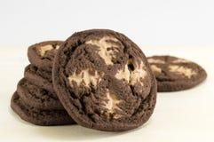 Καφετιά μπισκότα τσιπ σοκολάτας Στοκ Φωτογραφίες