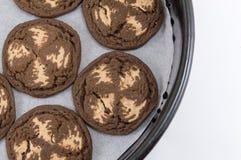 Καφετιά μπισκότα τσιπ σοκολάτας Στοκ φωτογραφίες με δικαίωμα ελεύθερης χρήσης