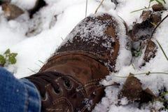 Καφετιά μπότα ατόμων στο χιόνι Στοκ εικόνα με δικαίωμα ελεύθερης χρήσης