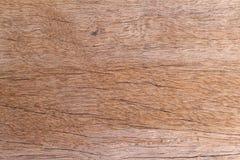 Καφετιά ξύλα Στοκ Φωτογραφία
