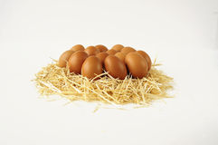 Καφετιά οργανικά αυγά στο άχυρο Στοκ Εικόνες
