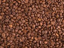 Υπόβαθρο φασολιών καφέ Στοκ Εικόνα