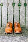 Καφετιά παπούτσια νεόνυμφων δέρματος Στοκ Φωτογραφία