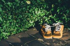 Καφετιά παπούτσια παιδιών σε ένα πάτωμα με το υπόβαθρο φύλλων στο ηλιόλουστο βράδυ Στοκ Εικόνα