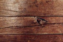 καφετιά στενή σύσταση επάνω στο δάσος παλαιές επιτροπές ανασκόπησης Στοκ Εικόνες