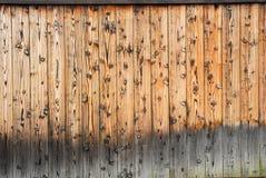 καφετιά στενή σύσταση επάνω στο δάσος Στοκ Φωτογραφίες