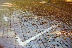 Καφετιά φύλλα χώρων στάθμευσης Στοκ εικόνες με δικαίωμα ελεύθερης χρήσης