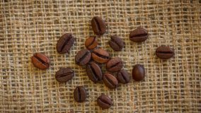 Καφετιά ψημένα φασόλια καφέ που περιστρέφονται το υπόβαθρο απόθεμα βίντεο