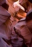 Καφετιές και πορτοκαλιές μορφές βράχου, χαμηλότερο φαράγγι αντιλοπών στοκ φωτογραφίες με δικαίωμα ελεύθερης χρήσης